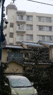 28雪の日.jpg