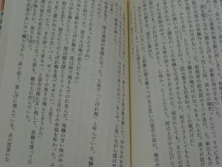 DSC06988.JPG