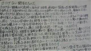 さりげない野菜お便り (2).jpg