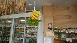 吊るしたバナナ.jpg