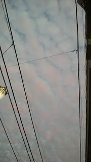 東の空 (2).jpg
