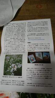 池松さんお便り2.jpg