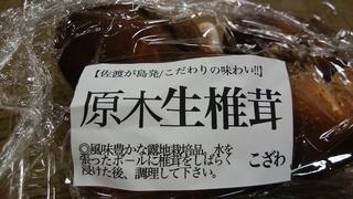 生シイタケ.jpg