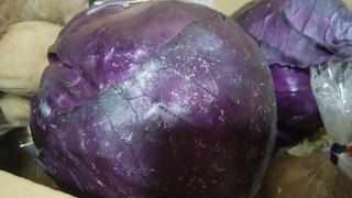 紫キャベツ.jpg
