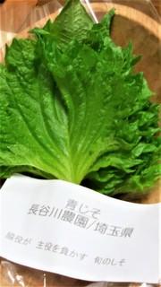 縮緬紫蘇 (2).jpg