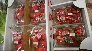 苺フェアー.jpg