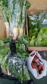 飯田さん野菜.jpg