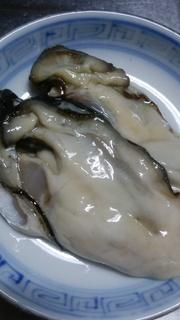 15生牡蠣の美しさ.jpg