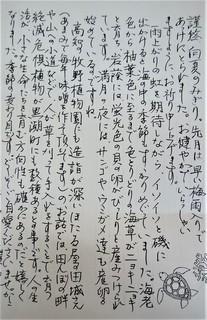 18日あまみ夏のおたより (2).jpg