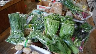 18日たくさんの野菜.jpg