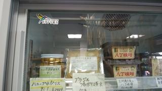 23日ハチドリ電力.jpg