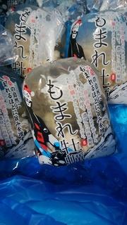 25もまれ牡蠣.jpg