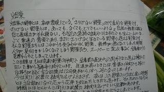 27畑菜便り.jpg
