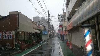 28ぼた雪.jpg