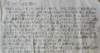 5月21日葉牛蒡お便り (2).jpg