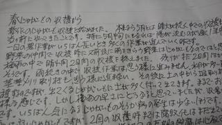 5月28日岩崎さん新じゃがお便り.jpg