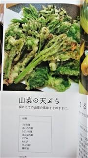 5月8日山菜の天ぷらいろいろ (2).jpg