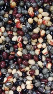 6品種小豆.jpg