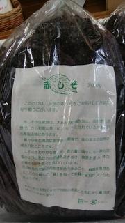 7月12日奈良県赤紫蘇.jpg