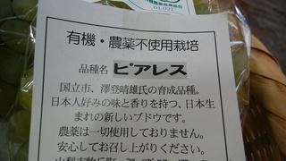 8月23日ピアレスラベル.jpg